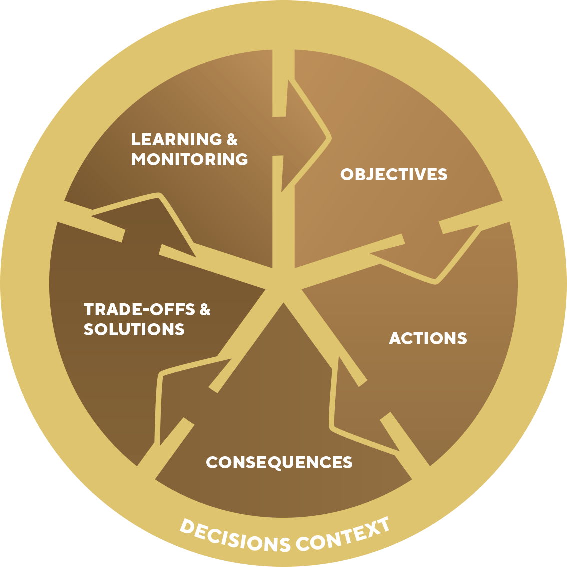 Figure 1 The decision analysis process